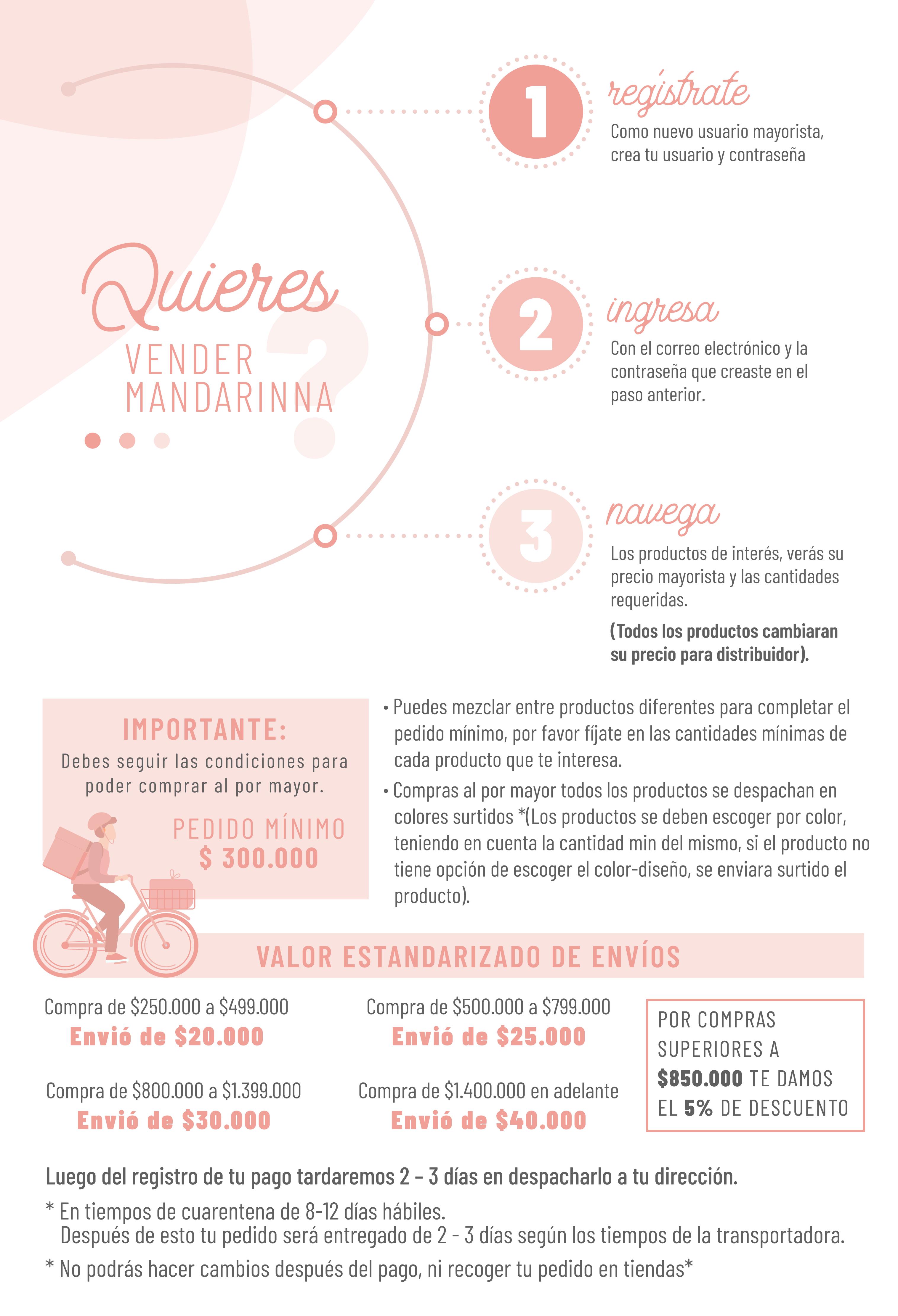 infografico-mayorista (2)